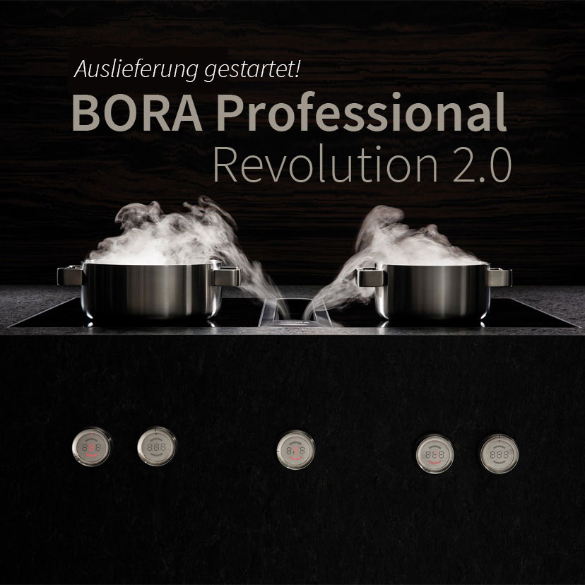 start-bora-professional-revolution-2-0